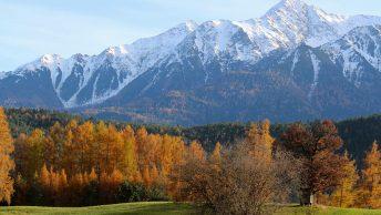 Goldener Herbst am Mieminger Sonnenplateau. Foto: Knut Kuckel/Tirol.bayern
